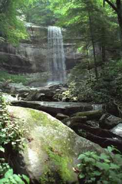 Waterfall in the Great Smokey Mountains